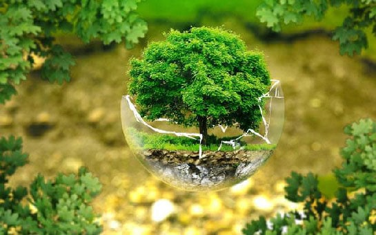 environmental-protection-326923_1920_647_061917055122